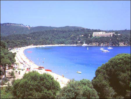Koukounaries is the most famous beach of Skiathos and reputed to be the best in the Aegean if not the whole Mediterranean. It has fine golden sand leading up to